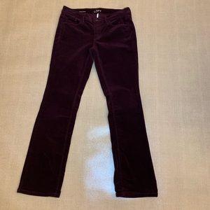 Ann Taylor Loft Modern Sexy Boot Corduroy Pants